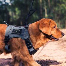 OneTigris Water-Resistant Dog Harness Walking Hiking Hunting