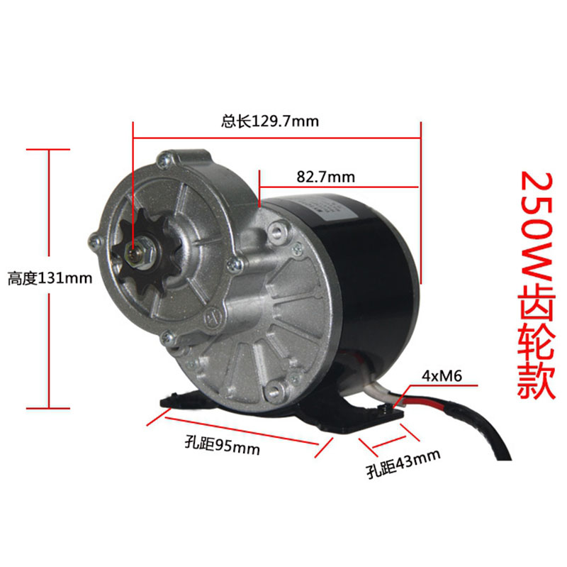 12V 24V 250W Brushed Permanent Magnet DC Gear Motor MY1016Z Electric Bike Bicycle Tricycle Ebike Belt Motor Big Torque