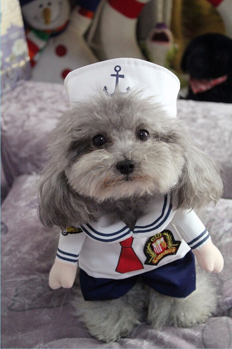 Pet Funny Clothing Dogs Cats modelling of Costume Novelty ...