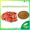 Lower Price  Antrodia Cinnamomea Extract 20:1  1000g