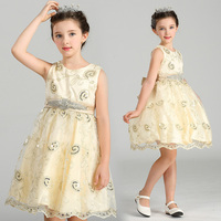 Wholesale Gold Embroidery First Communion Dresses 12 pcs/lot Noble Elegant Party Dress Kids Girl Pageant Dresses Free DHL LM1901