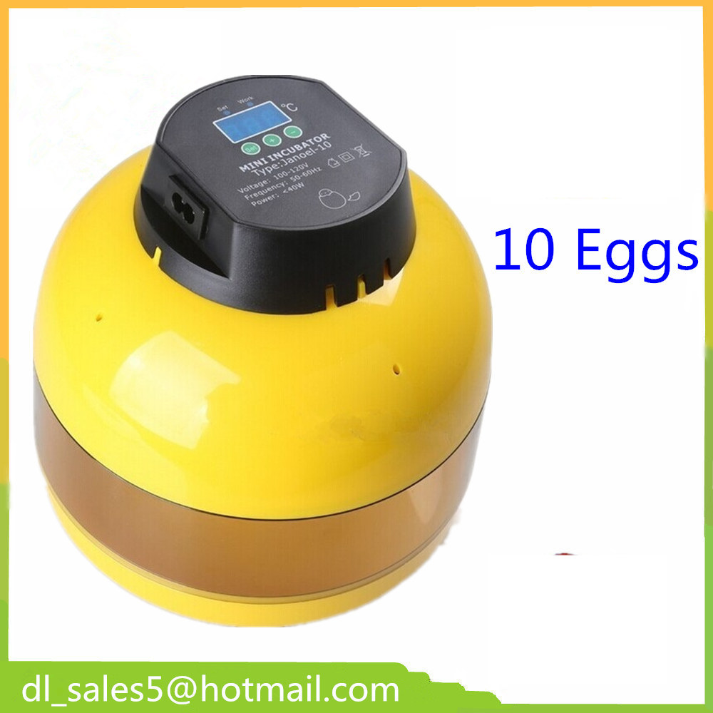 chicken duck quail bird eggs poultry hatchery eggs for sale chicken egg hatchery ce certificate poultry hatchery machines automatic egg turning 220v hatching incubators for sale