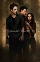 Special Offer Good 2015 Home Decor TOP Art Oil Painting Handpainted The Twilight SAGA New Moon