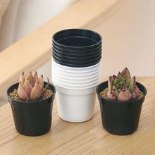 10PCS Mini Plastic round Flower Pot Nursery Planter Home Decor(China)