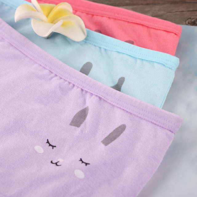 19c1aaf011 Online Shop Breathable cuecas cotton underwear panties lace summer knickers  Japanese Sweet Girls Briefs hare low waist underpants female