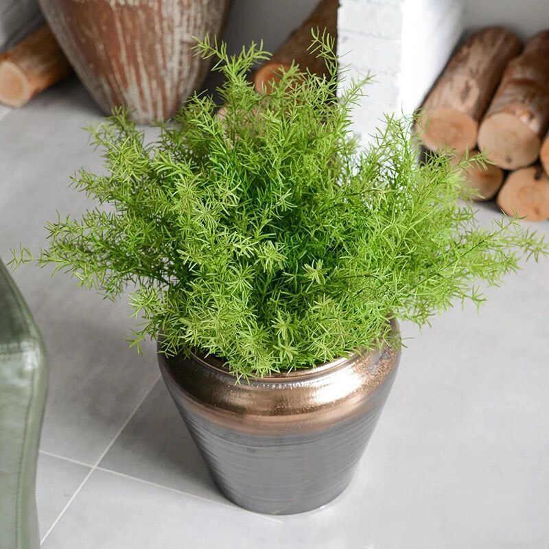 Artificial Asparagus Fern Grass Bushes Plastic Green Plants Flower Home Office Decorative Plants Artificial Plants Aliexpress