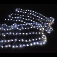 Belly Dance LED Silk Fan Veil