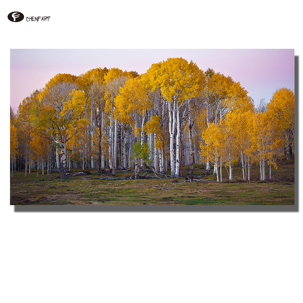 CHENFART Living Decoration Pictures Photo Picture Dawn Aspens Boulder Mountain Canvas Paintings for Bed Room with no Frame