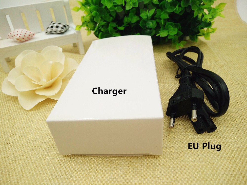 12V 3A Battery Charger (3)