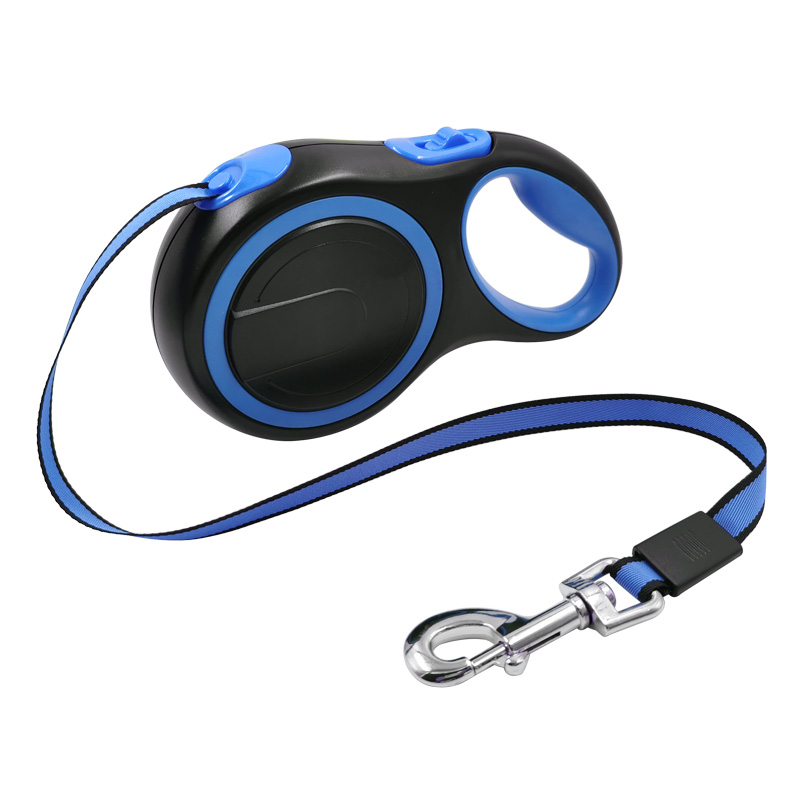 Blue Leash