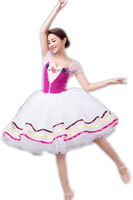Dancewear Ballet Tutu Dress For Kids Children Women Professional Purple Dance Costumes Justaucorps De Danse Pour Les Femmes