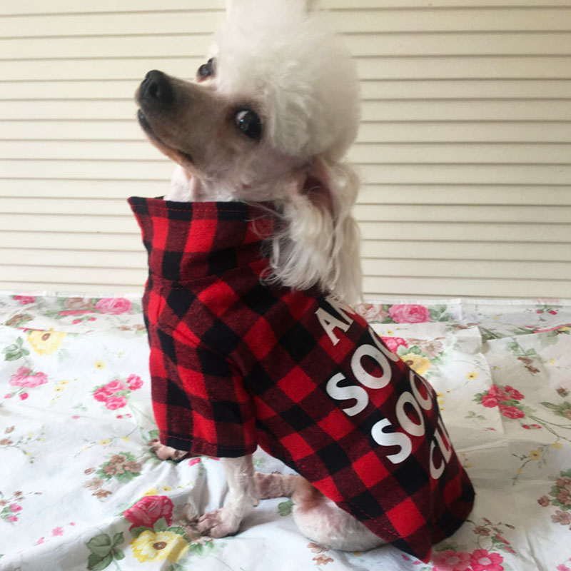 Letter Plaid Dog Shirt Clothes Summer Dog Pet Cat Coat Jacket Small Dog Chihuahua Wedding Clothes Suit
