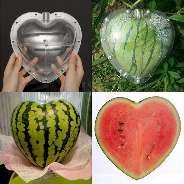 DIY Large Size Plastic Square Heart Shape Watermelon Shaping Mold ...