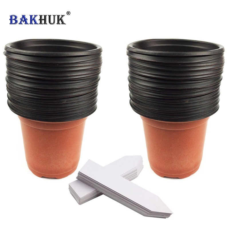 Bakhuk 50 Sztuk 4 10 Cm Plastikowe Sadzonki Kwiatów