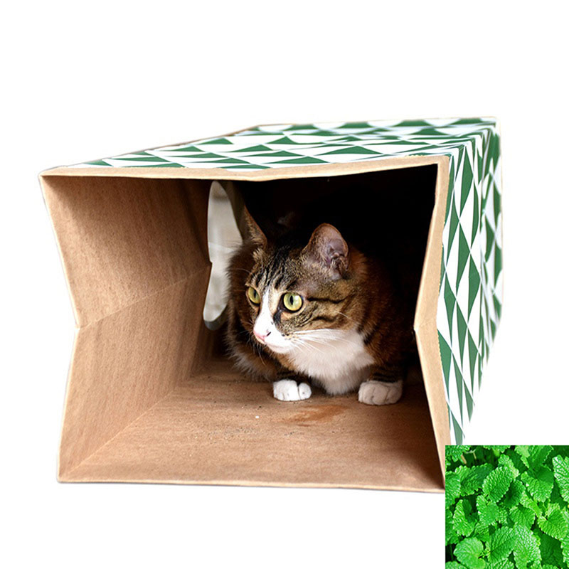 2017 New Pet Toys Cat Supplies Cat Mint Toy Cat Channel Tunnel Cat House Tunnel Folding Game Holes Playing Kraft Paper Y6