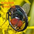 KnightX 52 58 67 mm Macro Close Up  +10  lens Filter for Sony Nikon Canon EOS DSLR d5200 d3300 d3100 d5100 nd gopro lens lenses