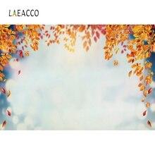 Autumn Backdrops Fallen Leaves Foliage Bokeh Baby Newborn Portrait Sky Scenic Photographic Backgrounds Photocall Photo Studio