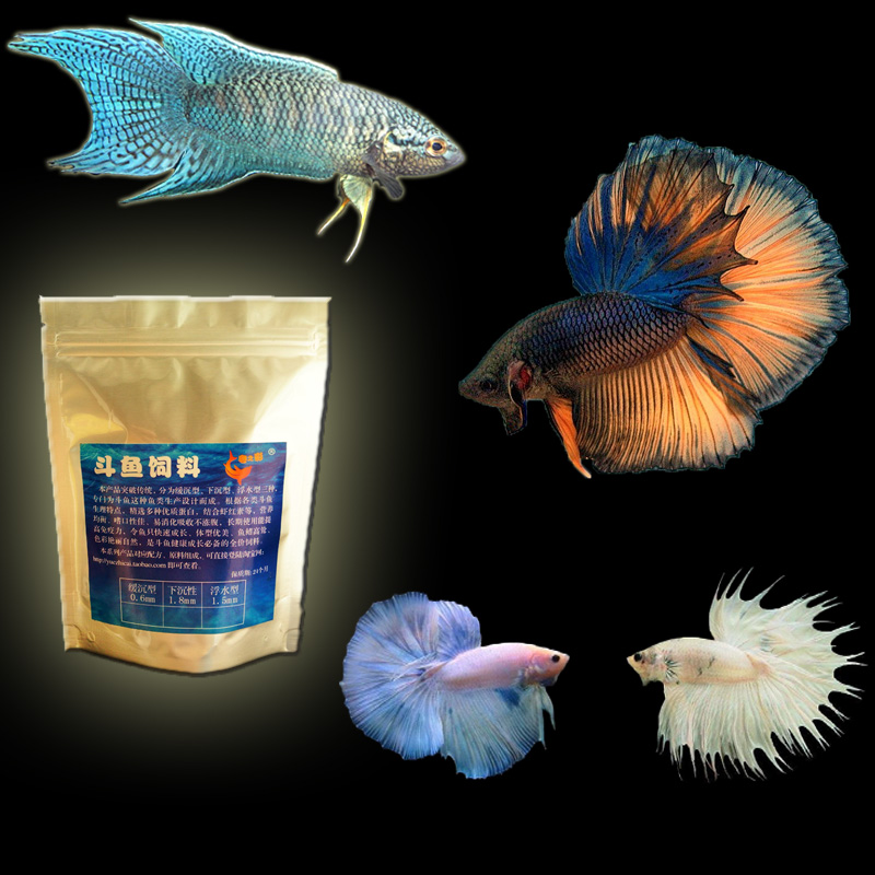 Fish tank aquarium 200g betta special food betta feed for for Betta fish feeder