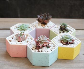 2019 6PCS Gardening Hexagon Mini Cement Flower Pots Planter Nursery Flower Pots Garden Supplies Rainbow Thumb Flower Pots ZH008