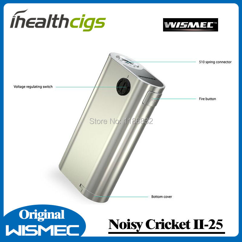 Noisy Cricket II 4