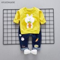 HYLKIDHUOSE 2018 Spring Children Clothes Sets Baby Girls Boys Suits Cartoon Rabbit Cotton T Shirt Pants