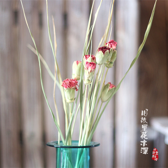 Carnations, natural drying facilities, shooting props, guest houses, cafes, bars, clothing, shopping malls, wedding decorations