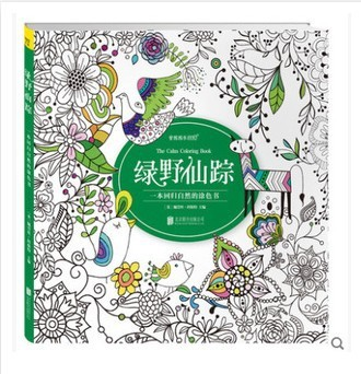 The Wizard of Oz coloring book for adults secret garden book antistress coloring book for adults painting libros colouring books