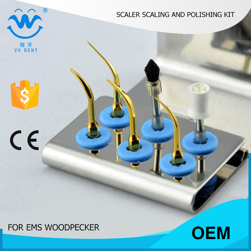 2 SETS EMS WOODPECKER MECTRON SYBRONENDO dental care kit ESPKG teeth whitening and polishing  dental titanium gold tips dental kerr finishing polishing assorted kit occlubrush cup brushes