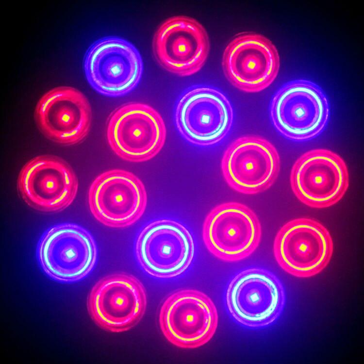 Levou Crescer Luzes sistemas hidropônicos Led Plant Grow Light : Marine Aquarium.light For Aquarium