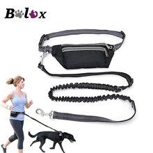 Laisse pour chiens, imperméable à la taille, mains libres, multifonction, produit de course, élastique, ajustable