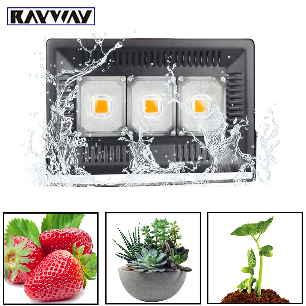 top 8 most popular growing light outdoor brands and get free