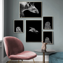Tapir Seagull Rhino Owl Lion Wild Animal Wall Art Canvas Painting Nordic Posters and Prints Wall Pictures for Living Room Decor брюки с рисунком tapir wave