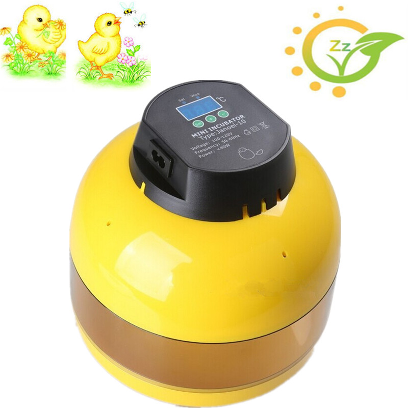 Best Sale Mini Brooder 10 Egg Incubator manual Controller for Chicken Duck Quqil Goose egg top selling automatic egg incubator mini 48 egg incubator for sale