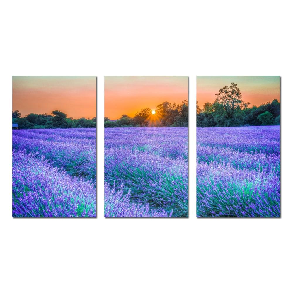3 panely na zeď dekorace úžasná kresba malba na plátně fialová levandule při západu slunce na šířku obrázek (bez rámečku) 30X50X3 ks