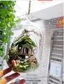 Pakitoy DIY bola de vidro de madeira modelo casa de bonecas em miniatura Mini Handmade Dollhouse presente de aniversário Mini sonho selva