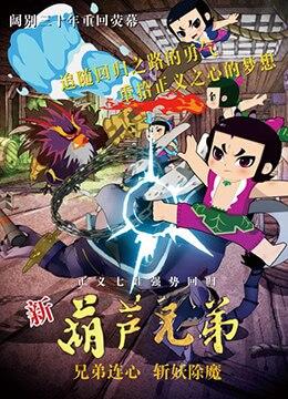 《新葫芦兄弟 第一季》2016年中国大陆儿童,动画动漫在线观看
