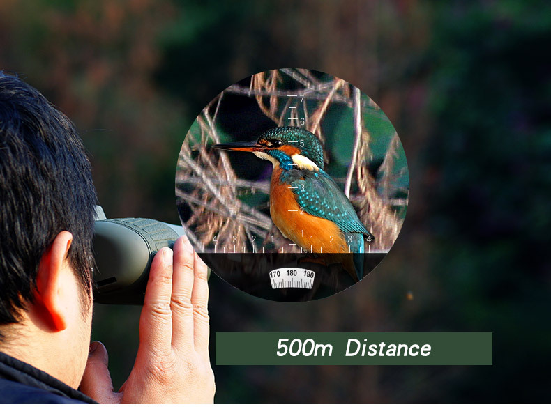 Cheap marine binoculars