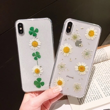 Tfshining Dried Real Flower Cases For iPhone X XR XS Max Case Handmade Clear Fresh Daisy Soft Cover 6 6S 7 8 Plus