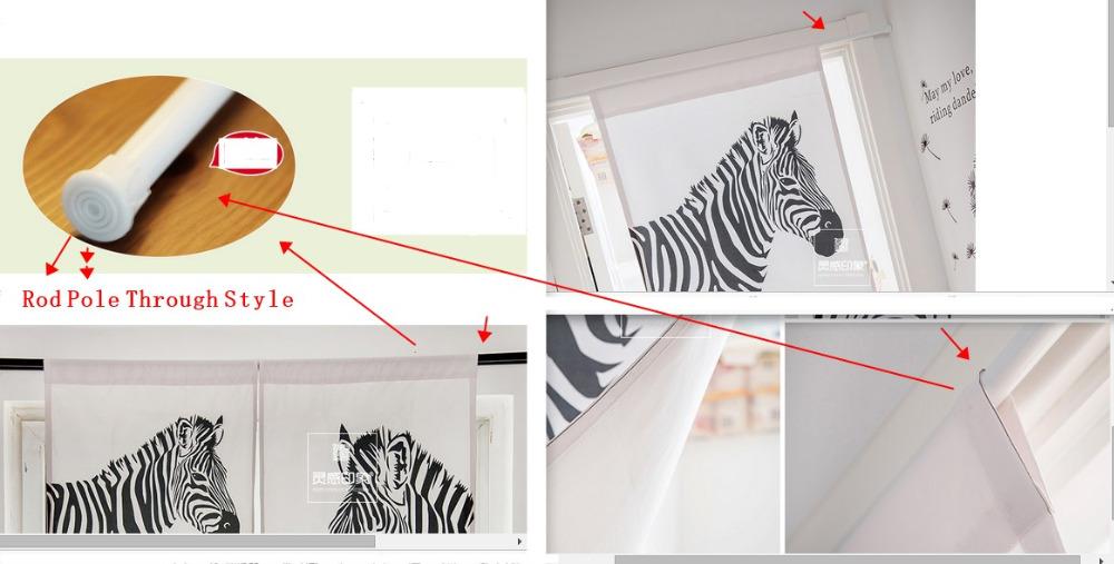 zebra rod pole mode
