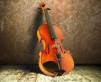 Free shipping Solid wood handmade violin 4/4 Red light Tiger pattern violino Professional Examination Stringed Instruments violi