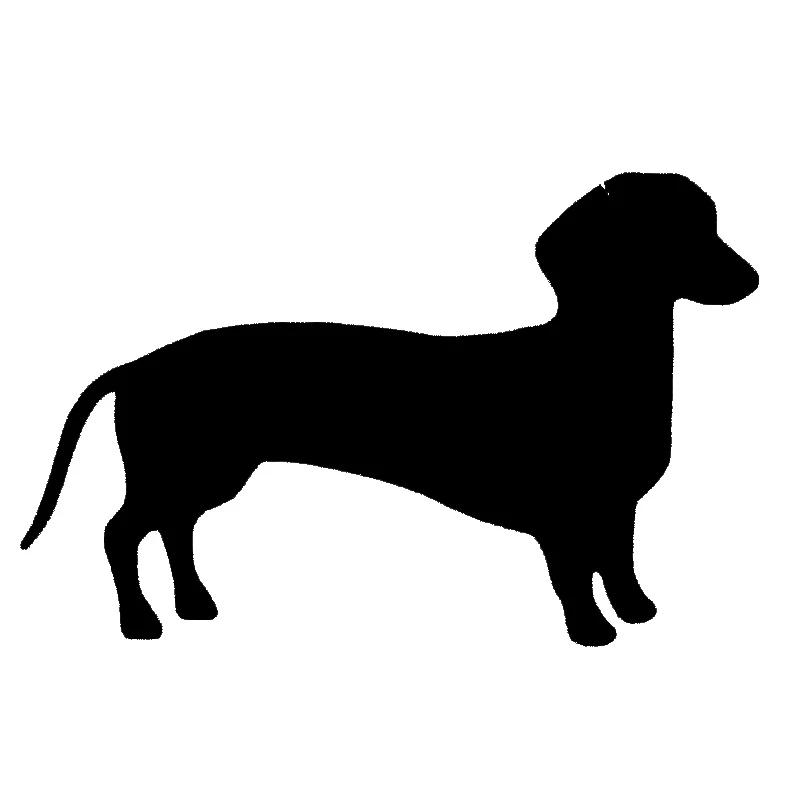 Keep calm and hug un teckel-saucisse chien//chiot vinyle autocollant 15 cm x 17 cm