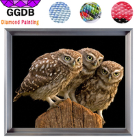 GGDB Three Little Owls Embroidery 5D DIY Diamond Painting Animal Home Decoration Arts Full Rhinestone Square