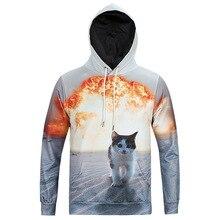 Fashion Casual Men's Fantasy Firebird Cat lion Lion Tiger Pattern 3D Print Set Sweater Hoodie Long Sleeve Cosplay 2017
