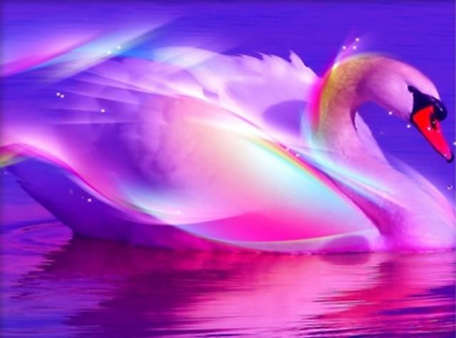 Dropwow Drill diamond embroidery Swans Diamond Painting Lover Swan ... 4cf26a878d80