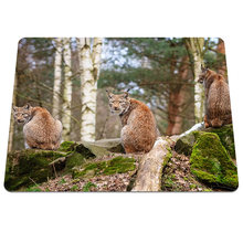 Hot Low Forest animals lynx wood stones Background Pattern Soft Silicone Durable Optical Computer Mouse Mat Rectangular Pads(China)