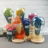 Romantic Gift Gypsophila LED Bulb Valentine Gifts Dried Babysbreath Bouquet Gift Led Glass Bottle Light String Wedding Gift