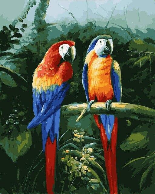 Toko Online Ween Amimal Pasangan Burung Beo Gambar Nomor Diy