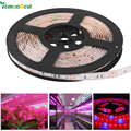 LemonBest LED Grow Light DC12V Resin Waterproof Hight Brightness 5050 LED Strip Light for Aquarium Greenhouse Plant Growing