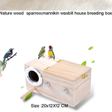 2015 Nature bird nest  parrot coconut shell