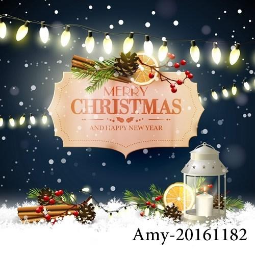 Amy-20161182